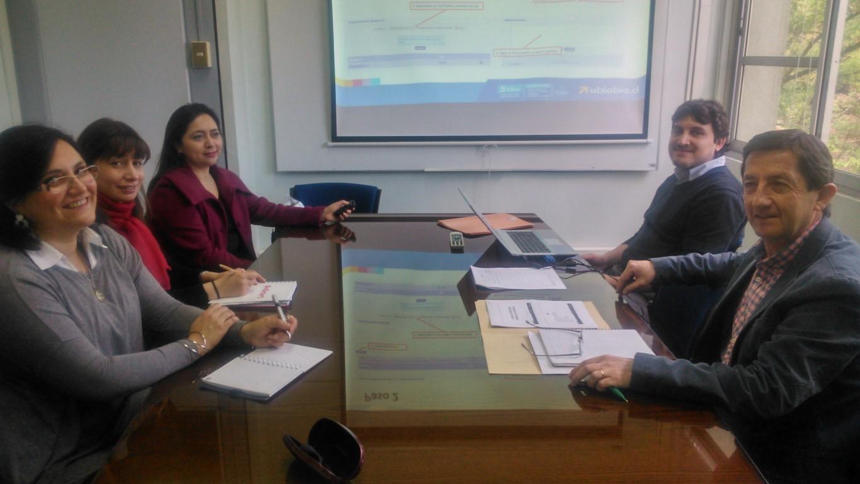 Talleres Comités planificación Unidades no Académicas Concepción 26-10-2015